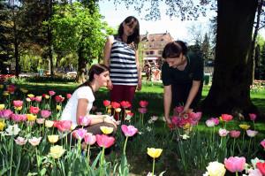 Bereits im Männerberuf: Gärtner-Azubi Sarah Heitz zeigt Pia und Sarah wie man Tulpen hegt und pflegt