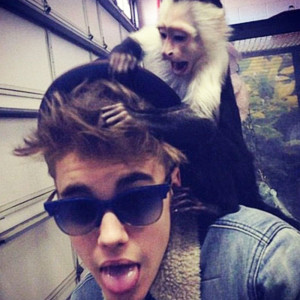 """Justin Bieber mit seinem Äffchen """"Molly"""""""