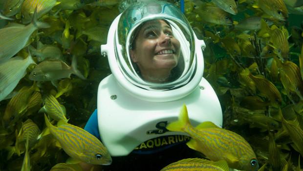 Sea Trek Reef Encounter im Miami Seaquarium