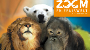 World Giraffe Day 2014 am 21. Juni in der Zoom Erlebniswelt