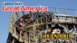 Gold Striker - California's Great America