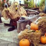 legoland_halloween2013_7