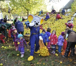 Kindergartenkinder und Euromaus beim Äpfelsammeln