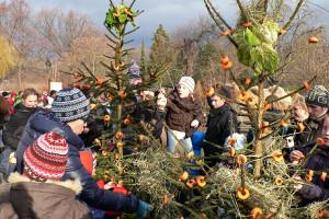 Weihnachten im Zoo Dresden 2013
