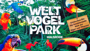 Weltvogelpark Walsrode im Winter: Wenn 4.000 Vögel gleichzeitig Urlaub machen