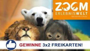 ZOOM Erlebniswelt: Freikarten-Freitag #15 – Gewinne 3×2 Eintrittskarten!