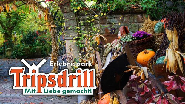 Erlebnispark Tripsdrill im Herbst