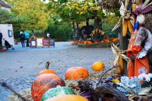 Erlebispark Tripsdrill Herbst-Dekoration