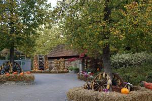 Tripsdrill Herbst-Dekoration