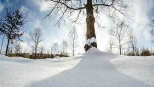 Schnee macht Freizeitparks in Benelux-Ländern im Winter 2014 zu schaffen