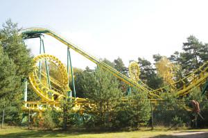 Flying Tiger - Whirlwind im Zoo Safaripark Stukenbrock