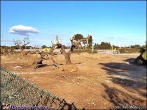 PortAventura Baustelle 4