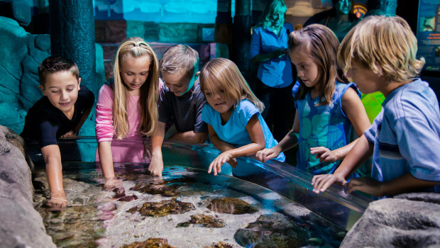 SEA LIFE Speyer Fischinventur 2015