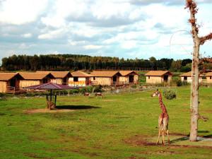 Serengeti Park Übernachtung in Lodges