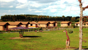 Serengeti-Park – Masai Mara-Lodges erhalten ehc-Zertifikat für ökologisches Wirtschaften