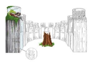 Dschungelcamp-Attraktion - Dusche