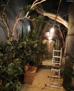 Dschungelcamp im Freizeitpark - Thorpe Park Baustellenbild 2
