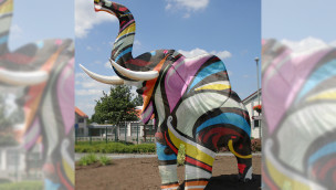 Zoo Safaripark Stukenbrock Schulprojekt