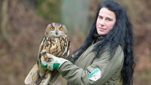 Erfolg für Wildpark-Falkner in Lüneburger Heide: Schwer verletzter Uhu fliegt wieder