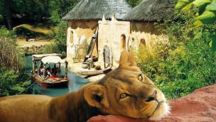 "Erlebnis-Zoo Hannover baut ""Afi Mountain"": Nächstes Projekt des Masterplan 2025+"