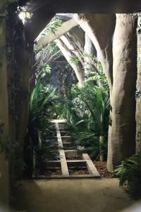 Dschungelcamp im Thorpe Park - Baustelle 5