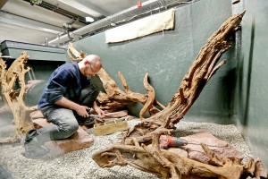Arbeiten am Exotenhaus im Zoo Karlsruhe