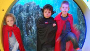 """""""Superhelden-Tage 2015"""" im SEA LIFE Oberhausen: gegen die Verschmutzung der Meere kämpfen"""
