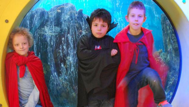 Superhelden-Tage 2015 im SEA LIFE Oberhausen
