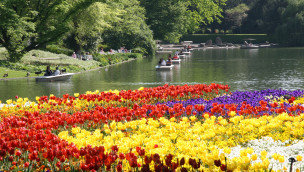 Zoo Karlsruhe lockt zu Ostern 2016 mit Blumenpracht