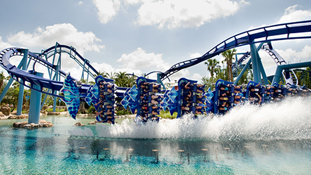 Manta in SeaWorld Orlando