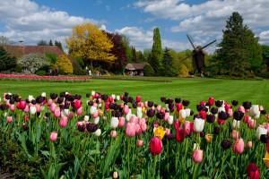 Weltvogelpark Walsrode im Frühling 2015
