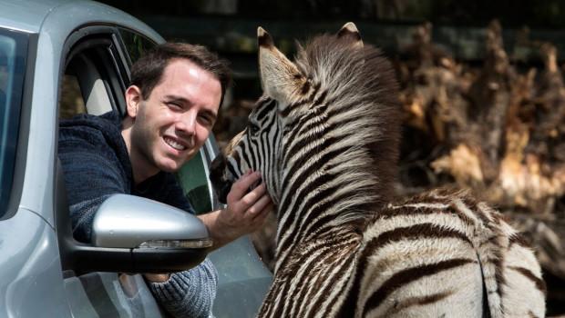 Malte Wöstenfeld mit Zebra im Serengeti-Park