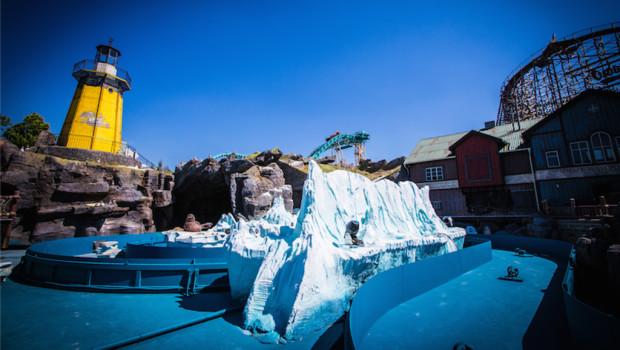 Whale Adventures - Northern Lights - Neugestaltung 1
