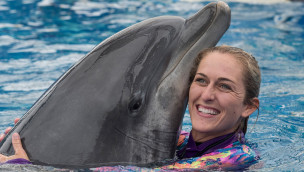 """SeaWorld San Diego präsentiert """"Dolphin Days""""-Show ab 13. August 2015"""