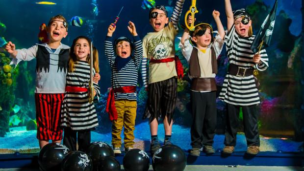 Piraten SEA LIFE Oberhausen