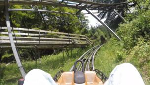 Alpine Coaster Abfahrt