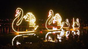 Zoo Karlsruhe feiert Lichterfest 2015 von 21. bis 23. August
