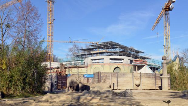 Tierpark Hellabrunn - Baustelle Elefantenhaus im Winter 2015