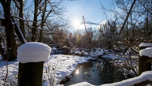 Tierpark Hellabrunn im Winter