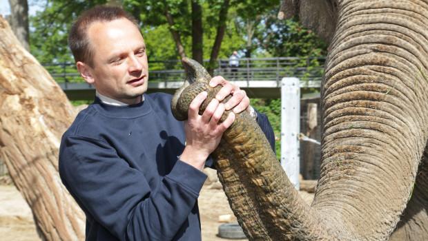Zoo Karlsruhe - Elefanten-Rüssel