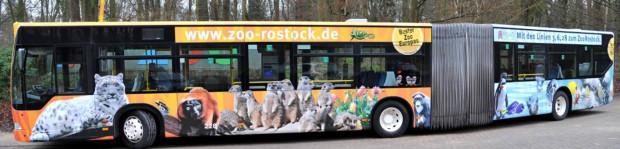 Zoo Rostock Stadtbus