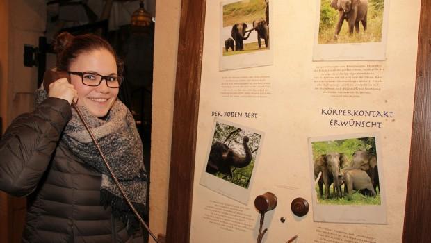 Erlebnis-Zoo Hannover Ranger Hör-Station 2016