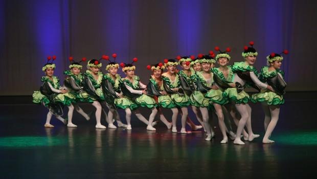 Green Miracles bei den Duisburger Tanztagen 2016