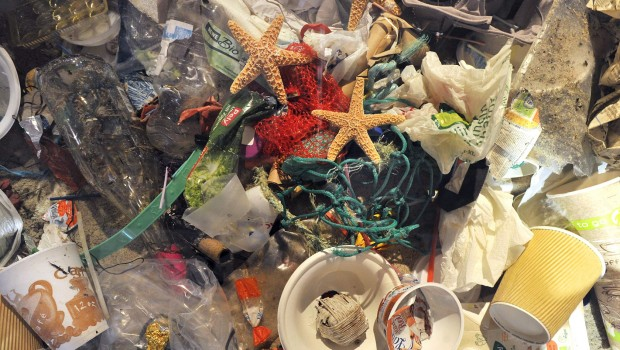Müll Im Meer Ausstellung im Zoo Rostock
