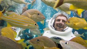 In Discovery Cove Orlando mit Fischen schwimmen unterstützt Riffe