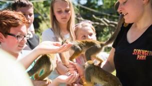 """Serengeti-Park stellt """"Safari-Schule"""" vor: Neues Konzept für außerschulischen Lernort"""