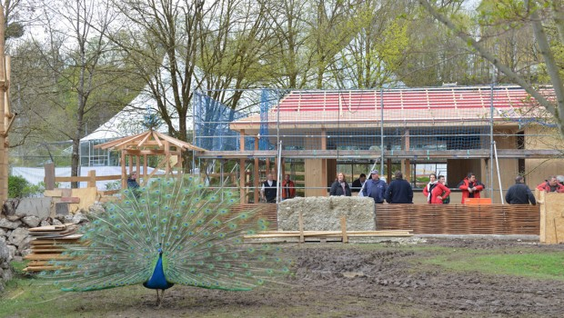 Tierpark Hellabrunn baut Asien-Kiosk