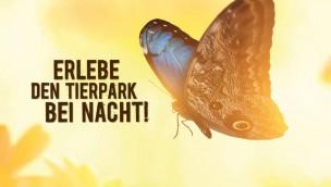 Tierpark Hellabrunn bei Nacht zum ersten Mal am 4. Juni 2016 zu erleben