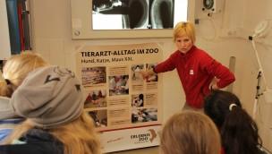 Zukunftstag im Zoo Hannover gab 2016 Einblicke in das Unternehmen Zoo