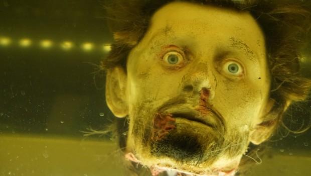The Walking Dead Breakout Kopf